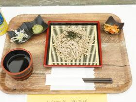 大宜味産和そば(3)